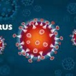 Cum actioneaza coronavirusul asupra organismului?
